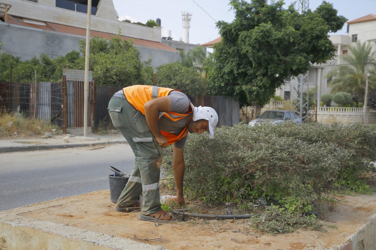 اعمال زراعة في مناطق مختلفة من المدينة