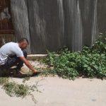 البلدية تباشر بحملة نظافة لمدينة قلقيلية