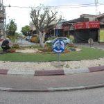 زراعة ورود موسمية في مناطق متعددة من المدينة