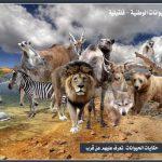 حديقة الحيوانات الوطنية تأسرك بجمالها وتنوعها الابداعي في المجالات كافة