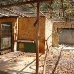 تاهيل وتوسعة لمنطقة بيت الاسود في حديقة الحيوانات الوطنية